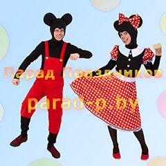 Микки Маус и Минни Маус аниматоры на детский день рождения Минск